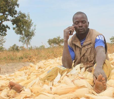 Avec les TIC, l'agriculture est plus sexy que jamais