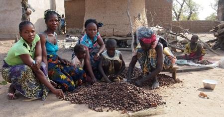 La transformation des amendes de karité peut rapporter gros aux femmes de Boborola